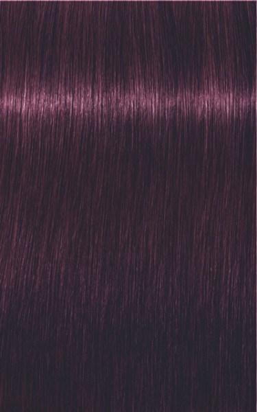 Igora Royal 0-99 Violett Konzentrat