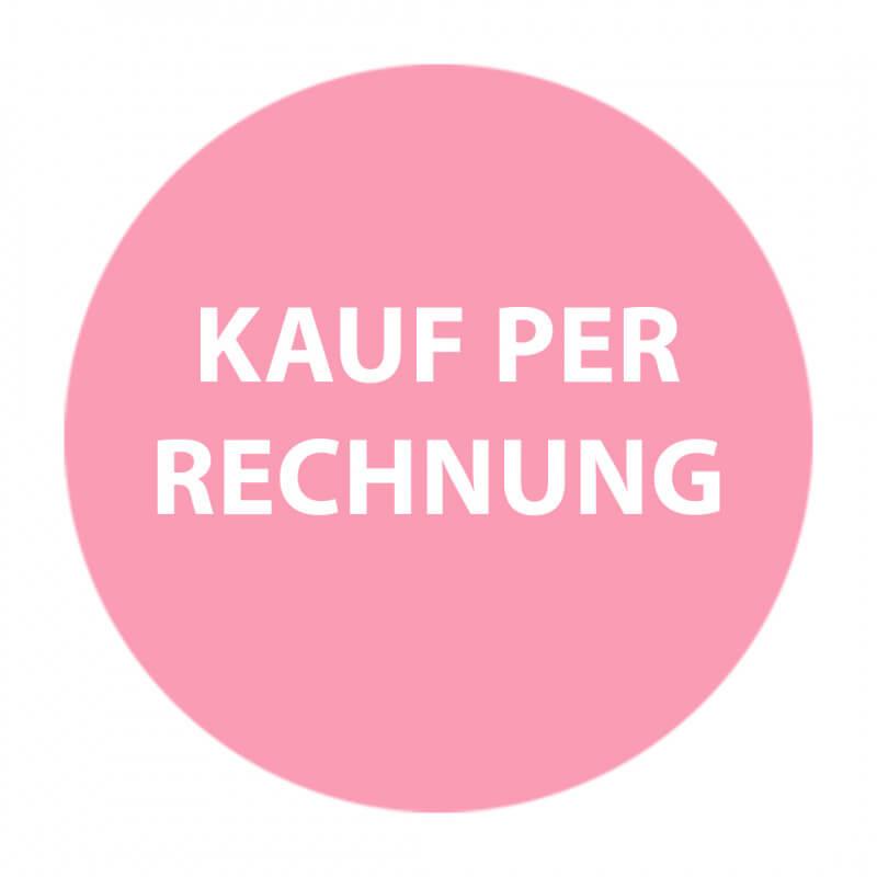 media/image/KAUF-PER-RECHNUNG-2.jpg