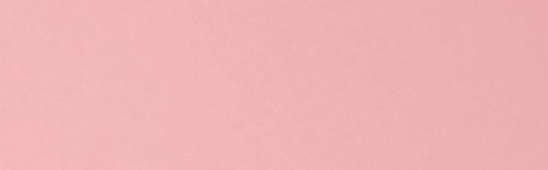 media/image/Pink-Banner-Content.png