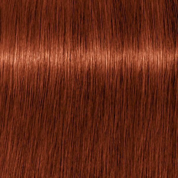 Igora Vibrance 6-78 Dunkelblond Kupfer Rot