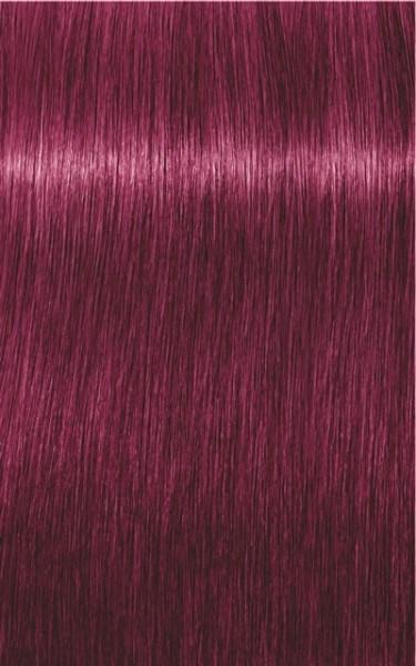 Igora Royal 0-89 Rot Violett Konzentrat