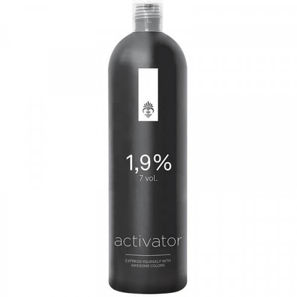 Activator Tönungsemulsion 1.9% (1000ml)
