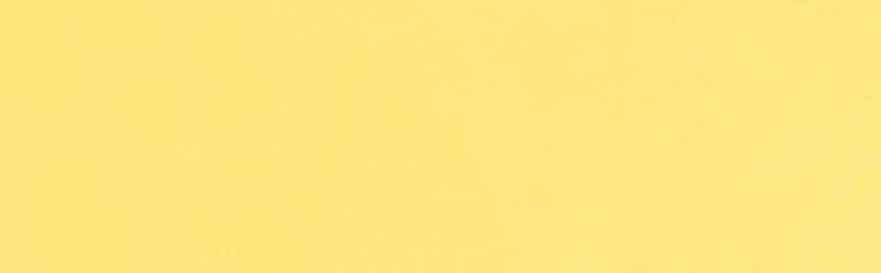 Flower Yellow