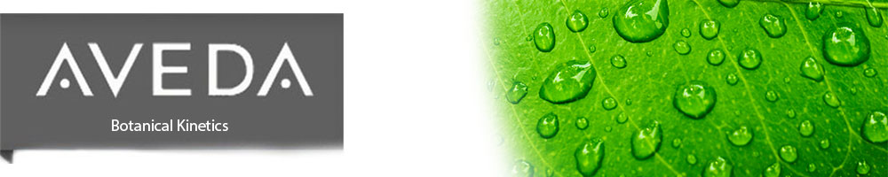 Aveda Botanical Kinetics