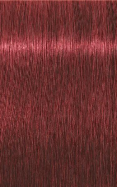 Igora Royal 6-88 Dunkelblond Rot Extra