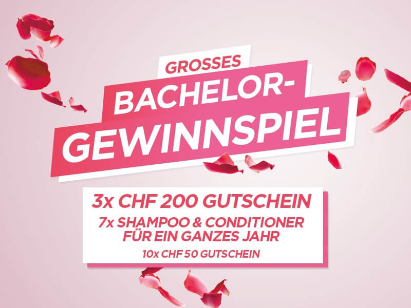 Bachelor Wettbewerb 2018 mobile