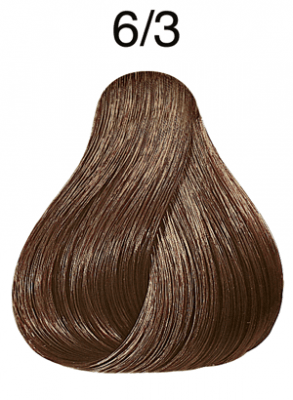 Color Touch Rich Naturals 6/3 dunkelblond gold