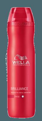 Brilliance Shampoo kräftig (250 ml)