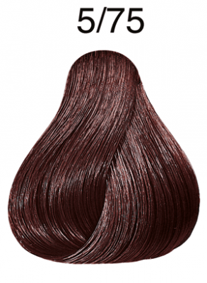 Color Touch Deep Browns 5/75 hellbraun braun-mahagoni