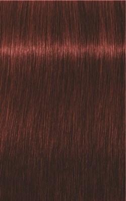 Igora Royal Absolutes 5-80 Hellbraun Rot Natur