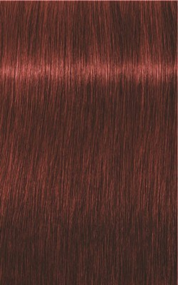 Igora Royal Absolutes 6-80 Dunkelblond Rot Natur
